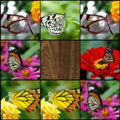 Memory (Butterflies) 1.2