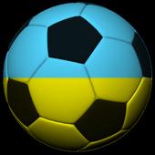 Ukraine Soccer Fan