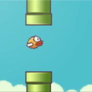Sloppy Bird 1.5.2
