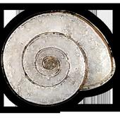 inpn.malaco icon