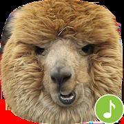 Appp.io - Alpaca Sounds 1.0.2