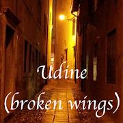 Udine (broken wings) 2.4