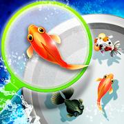 Shin Goldfish Scooping 2.9.2