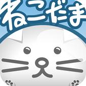 Nekodama Korogashi 1.0.6