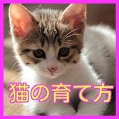 jp.ne.apps.hirorin.cat icon
