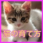 猫の育て方クイズ-猫のしつけ方や健康で病気にならない育て方 1.0.1