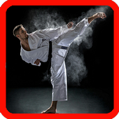 learn mixed martial arts 1.0.0