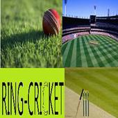 LaxmiMayee's Ring Cricket 2.0