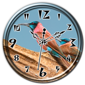 Blue Throated Bee-Eater Clock 1.2
