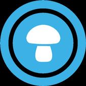 Mushroom places 1.2