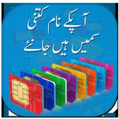 Check SIM Registration 1.3