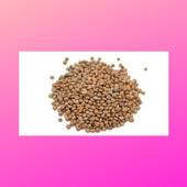 Health benefits of Lentils 1.1