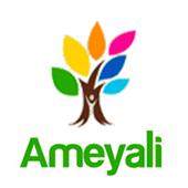 Ameyali 1.6.3