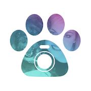 Petcam - Pet Camera 20.09.11