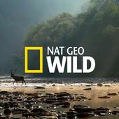 Nat Geo Wild Videos 1.0