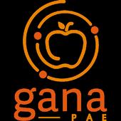 GANA-PAE 2.2.0