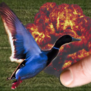 42's Save the Ducks! 1.3.4