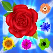Play Dreams Blossom Flowers Match3 1.0