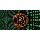 Free Bitcoin&Money 1.0