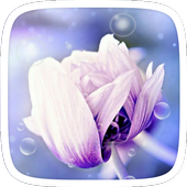 Purple Flower Theme