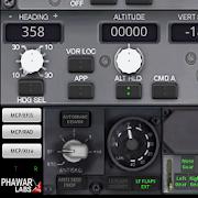 PWB737 MCP EFIS RADIO FSX P3D