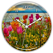 Spring Flowers Clock Live WP 1.0