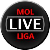 LiveScore for MOL League 3.2.1