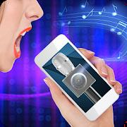 Karaoke Microphone Speaker Simulator 2.1