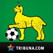 Гомель+ Tribuna.com 3.7.2