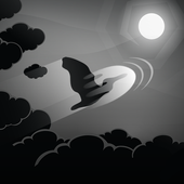 Birds Fly: Night Sky HD 1.0.597i