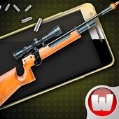 Simulator Weapon Summer 1.3