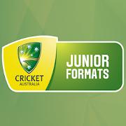 CA Junior Cricket 2.1