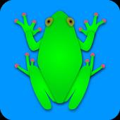 Frog2JumpTim KmeclCasual