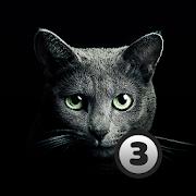 Find A Cat 3 1.5