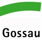 Stadt Gossau SG 1.5