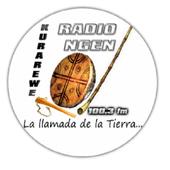 Radio Ngen 100.3 1.0