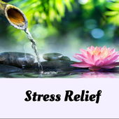 STRESS RELIEF 4.0