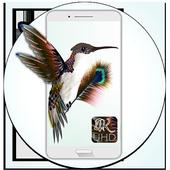 Strange bird Wallpapers(Full HD) 1.0