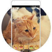 Cute Kitty Puppy Theme: Animal wallpaper 1.0.0