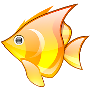 Angry FishTracking SystemAction