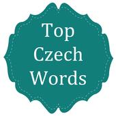Top Czech Words
