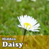 Hidden Object Games - Daisy 1.0