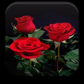 Rose Live WallpaperTyronPersonalization