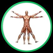 Ensiklopedi Anatomi 1.0