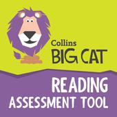 Big Cat Reading Assessment 1.7