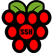 Raspberry SSH Custom Buttons 3 7 APK Download - Android