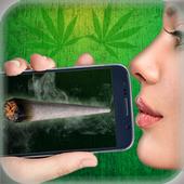 Virtual weed 6.0