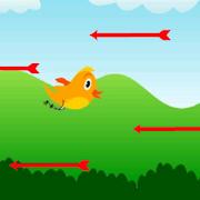 Surviving BirdYogesh SonaniAdventure