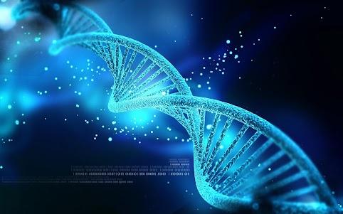 DNA Live Wallpapers 1.0 screenshot 2