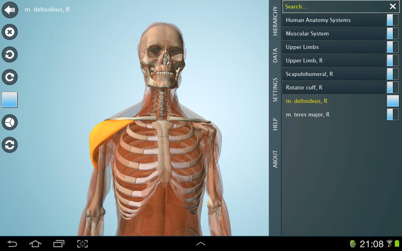 Anatomy 3d Anatronica 206 Apk Download Android Medical Apps